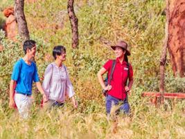 Uluru Morning Guided Base Walk 10.5 KM, Uluru-Ayers Rock - NT