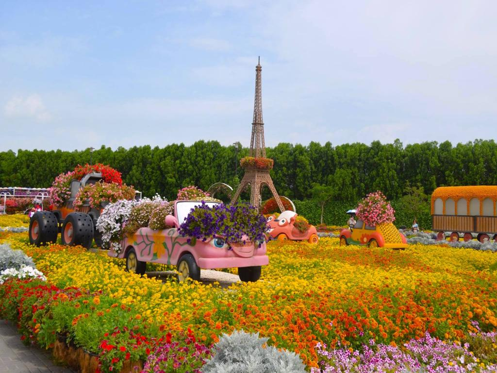 Miracle Garden And Global Village With Transfers Hotels Cars Activities Wise Travel