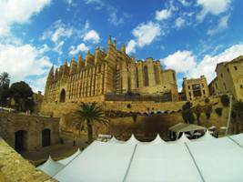Palma de Mallorca: 90 minutes Guided City Tour with Admission to the Cathedral, Majorca