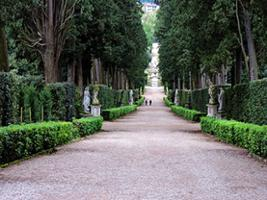 In the Footsteps of The Medici Family: Palazzo Pitti and Boboli Gardens - Private Tour, Florence
